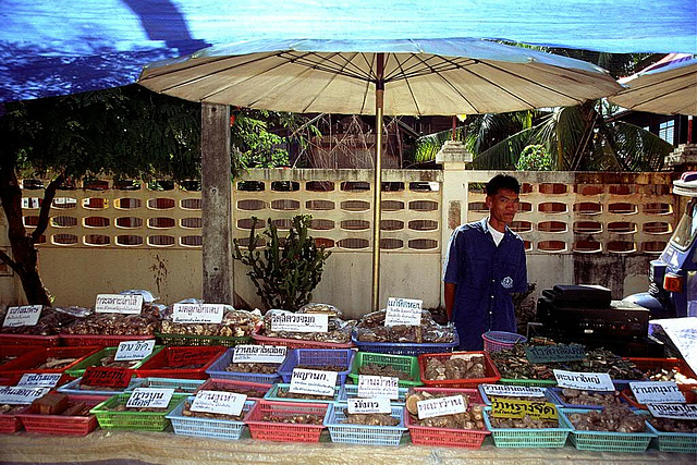 Vendor for spices, herbs and natural medicines