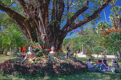 Picnic underneath the holy Bodhi Tree