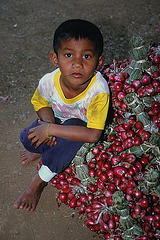 Boy in the village Kantaralak