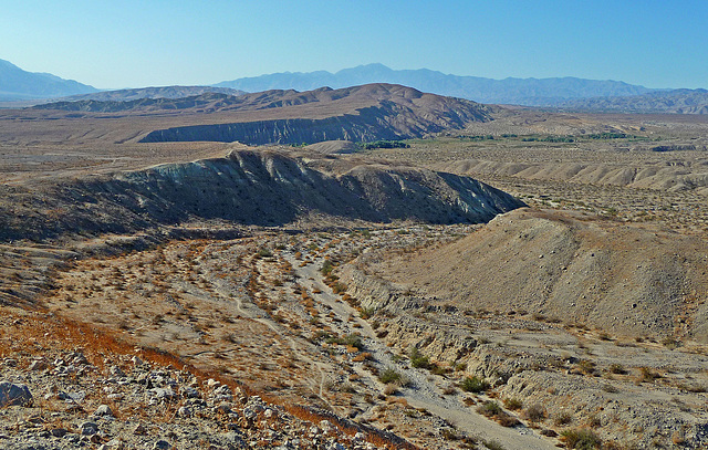 Coachella Valley Preserve (1627)