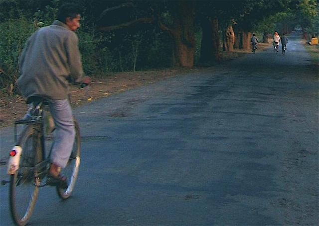 Dawn cyclist