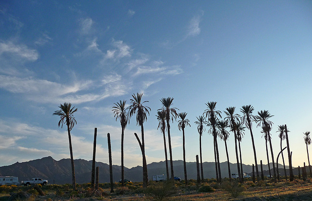 Desert Center (3680)
