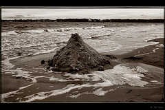 ~on the beach~