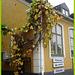 Encore une belle façade !   Once again a pretty façade ! -  Båstad, Sweden.  21 octobre 2008.