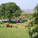 à table à Goa