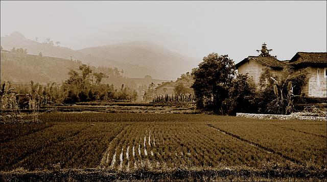 Fujian-'s landscape sépia