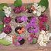 Flower arrangement in Goa