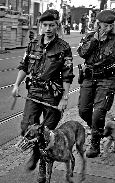 2 hours in Graz - 075 - Law and Order