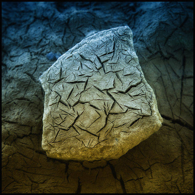 simple dry earth on stone