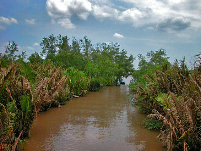 One of the hundreds channels of the Mekong Delta