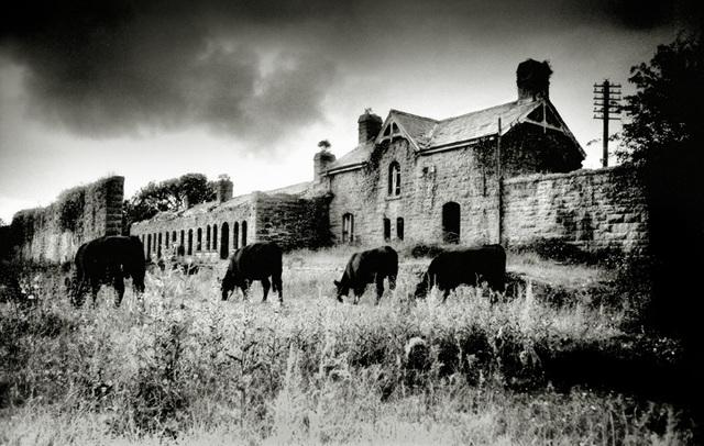 Abandoned Station, Belturbet, Co Cavan (1996)