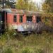 Lost Train in Nature