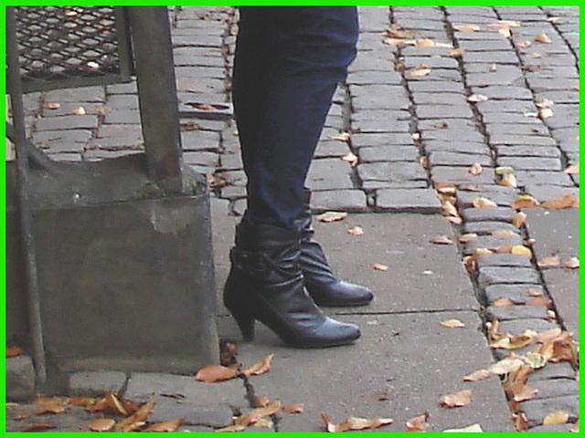 Bottines à talons hauts et feuilles d'automne tout en musique- Short high-heeled Boots and autumn leaves in music- Copenhague , Danemark.