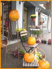 Fleurs et citrouilles / Flowers and pumpkins