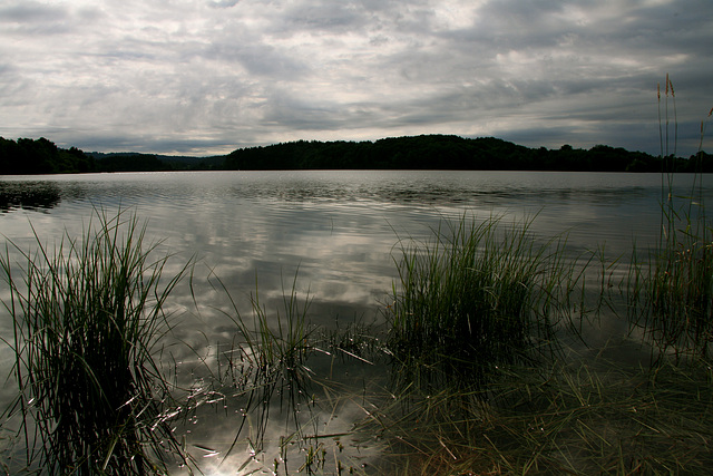 Au bord du lac N° 3