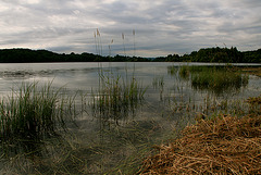 Au bord du lac N°2