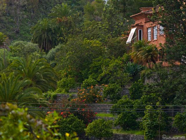 En Santa Brigida (Gran Canaria)
