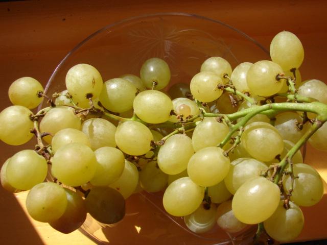raisins 017