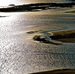 Ocean Riffle