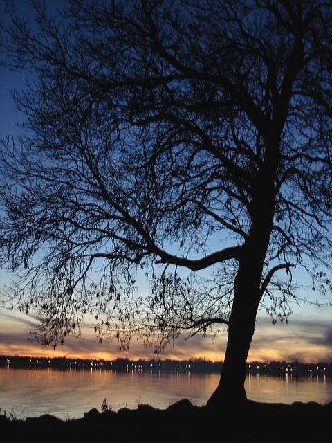 Coucher de soleil. Venise en Québec, QC- CANADA-  2 Novembre 2008.