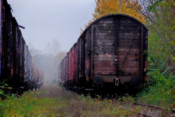 Trains and fog.......