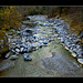 Saalach River