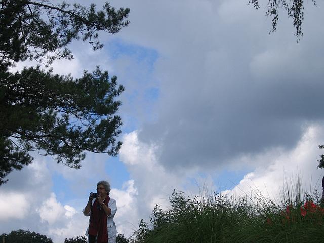pastel de nuages