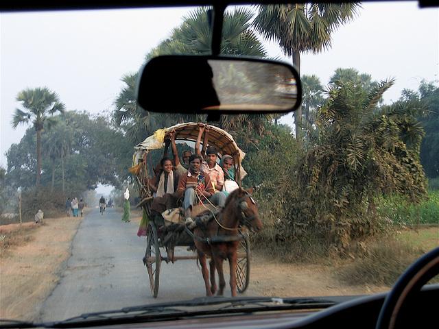 Carriole dans la campagne indienne