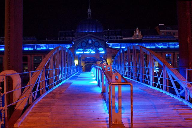 Blue Hamburg0160