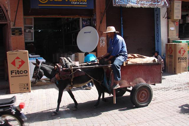 Maroc 2008 010