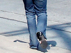 Jeune beauté asiatique en talons hauts / Short young Asian in jeans and high heels- Halifax, NS. Canada - Juin 2008