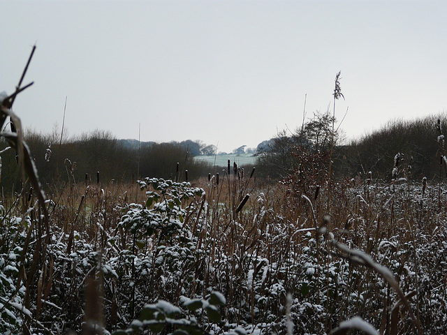First Snow Filsham