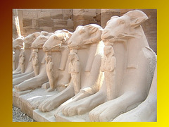 Criosphinx, Karnak, Egypte