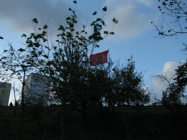 waving flag
