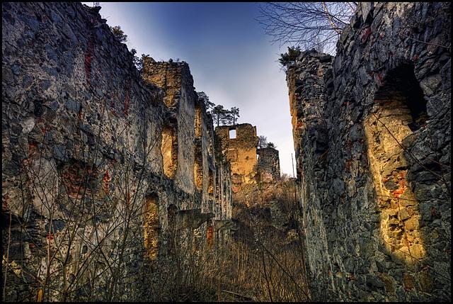 Castle Ruin Kaisersberg - 3