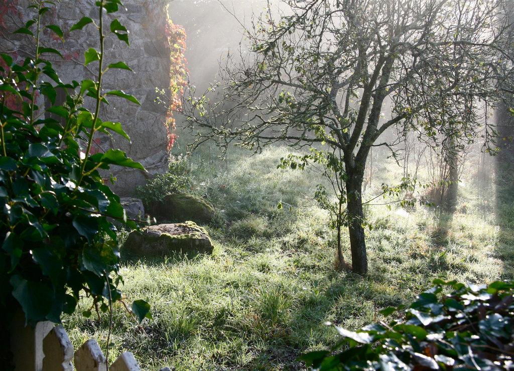 La brume se lève!