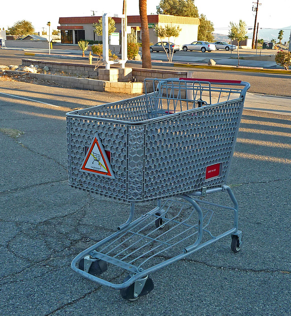 Save-a-Lot shopping cart (1642)