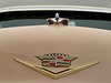 Hastings Car Show 09 -21