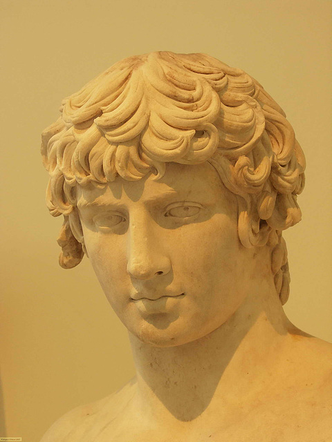 PICT17044ac Antinous Bust 100-138 AD Head Detail