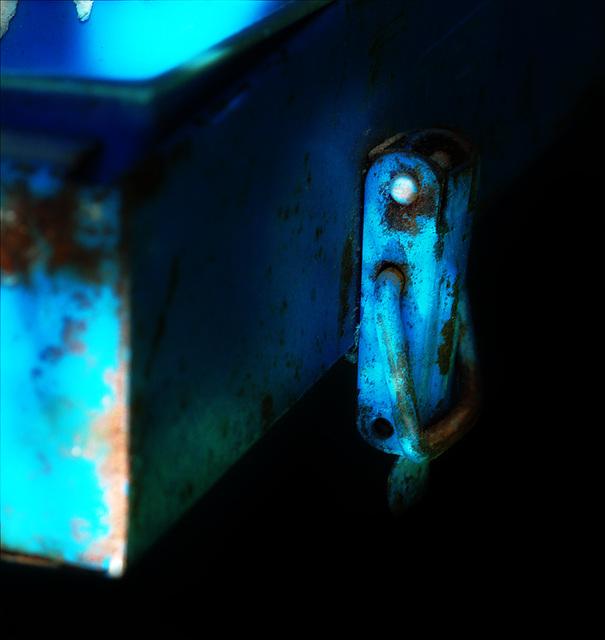 BLUE CICADA /CIGALE BLEUE