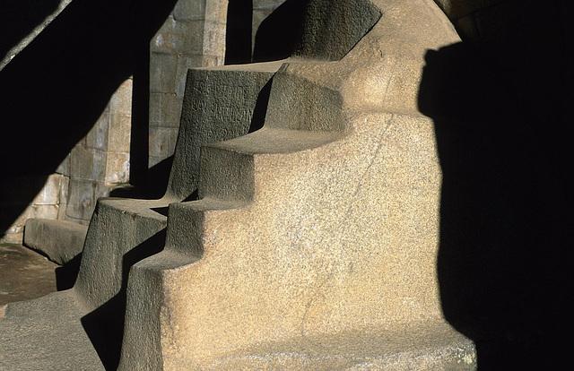 Condor Steps