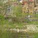Autour de Saint Gervais sur Mare (34)