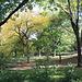 NYC30102008 007
