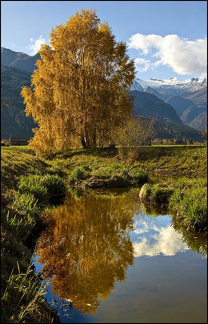 #12 - Autumn Reflection