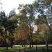 NYC30102008 012