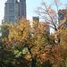 NYC30102008 021