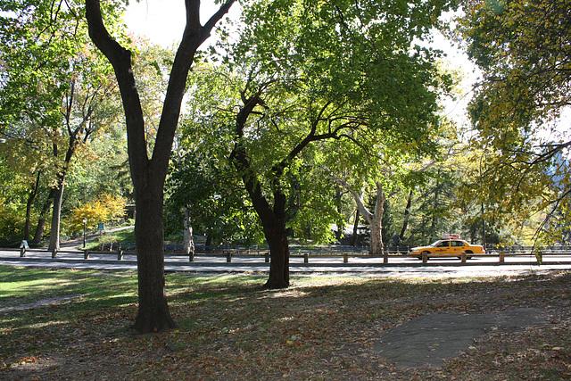 NYC30102008 068