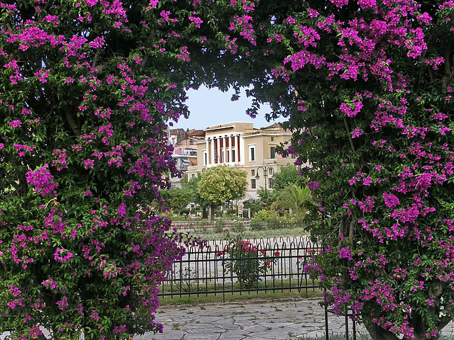 PICT18376ac Kerkyra Ano Plateia with Arched Bougainvilleas