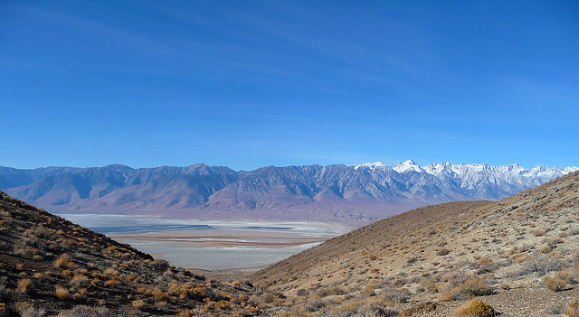 Owens Valley View (1737)