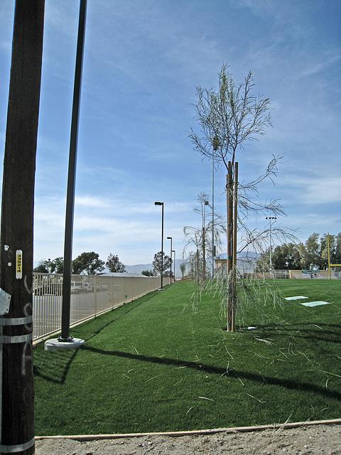 Wardman Park (2117)